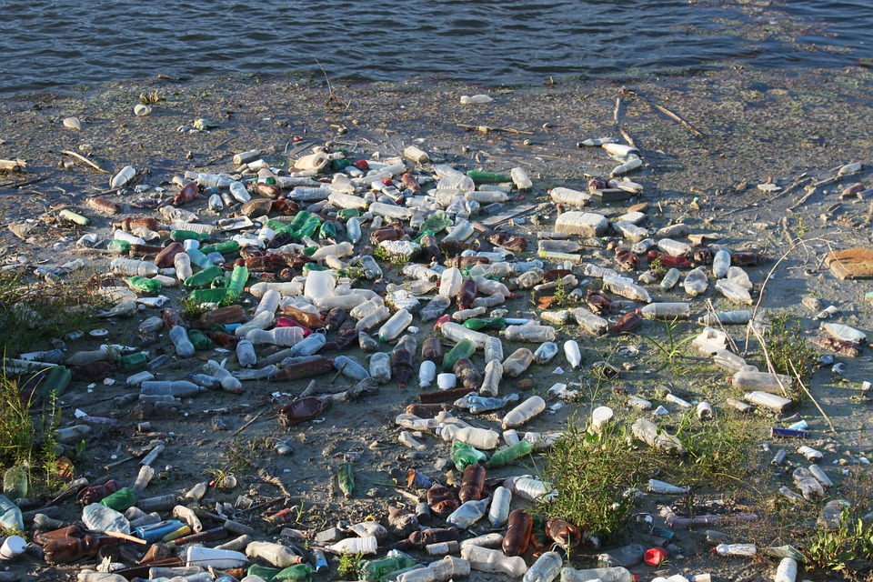 Plastic water bottles tend to make their way to the oceans, as seen here. Eventually, they decompose down to microplastics, a pollutant which is impossible for marine organisms to avoid consuming and which makes up the Great Pacific Garbage Patch.